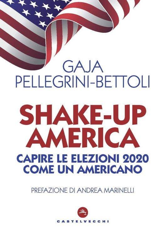 Shake-up America. Capire le elezioni 2020 come un americano.